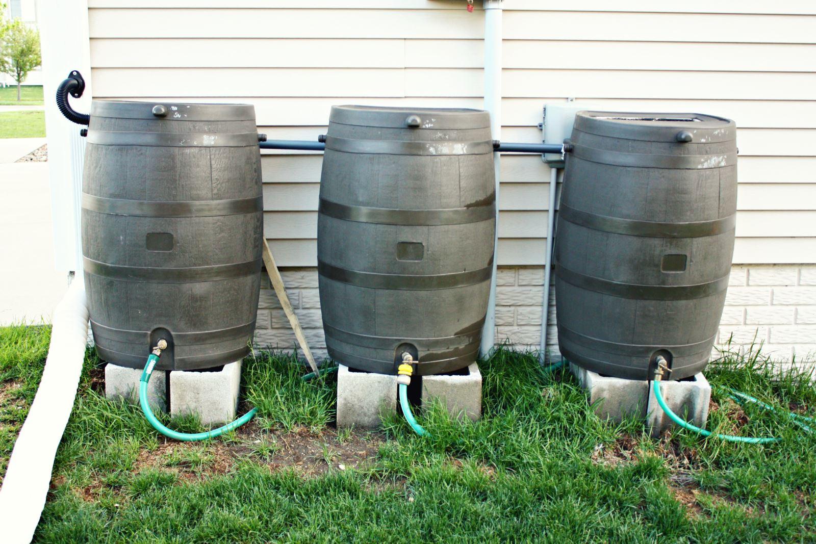 RWRA Hosting Rain Barrel Workshop - Owensboro Living