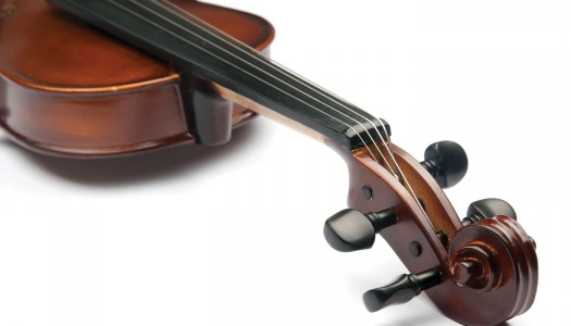 Orchestras Offer Adult Music Lessons